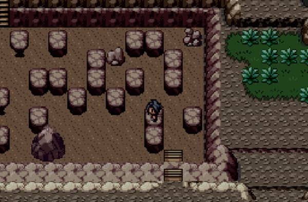 Pokemon Reborn 3-min