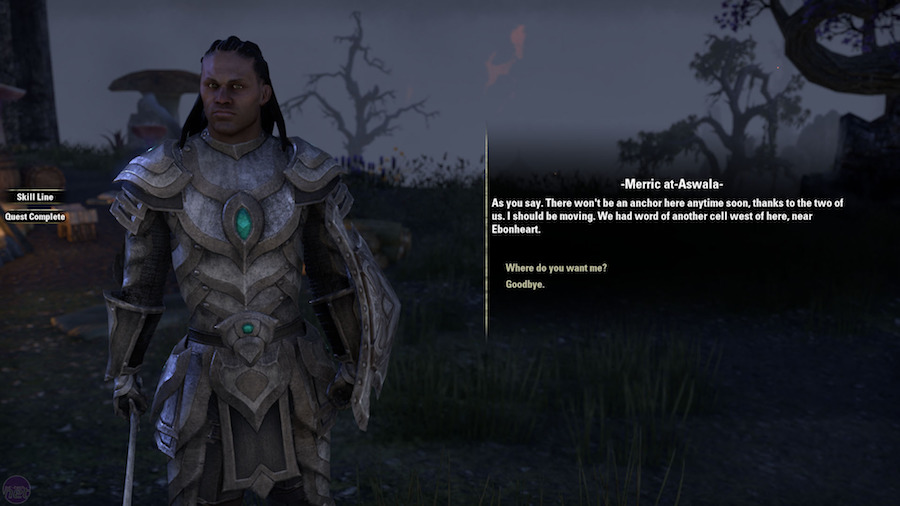 Elder Scrolls Online 4